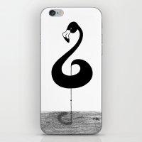 Musical Flamingo iPhone & iPod Skin