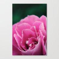 Flower In Bloom Canvas Print