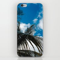 Sky behind the trees iPhone & iPod Skin