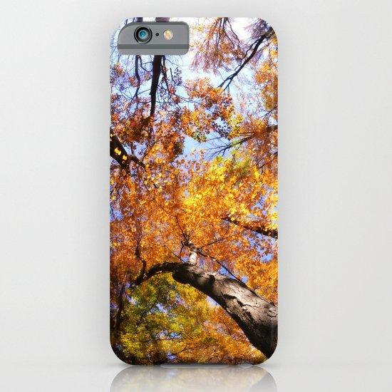 Autumn Sky iPhone & iPod Case