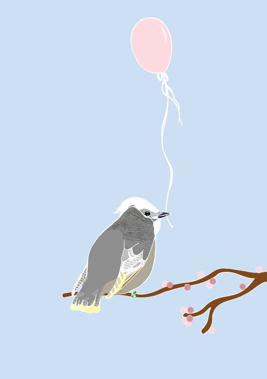 The birthday bird Canvas Print