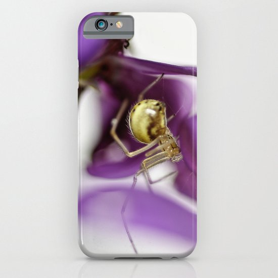 Spiderman... iPhone & iPod Case