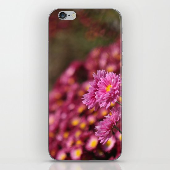 Colorful Pink Flowers iPhone & iPod Skin