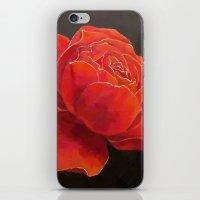 Rose Essence iPhone & iPod Skin