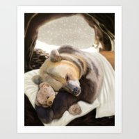 Sweet dreams, Mr Bear Art Print