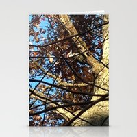 Pileated Woodpecker Amidst the Trees Stationery Cards