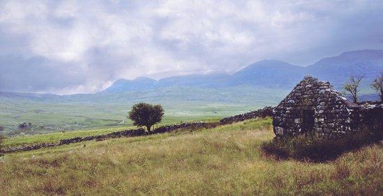 Rural Ruin Canvas Print