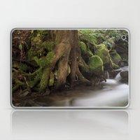 Paradise Creek II Laptop & iPad Skin