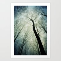 bare treetops Art Print