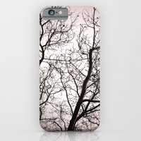 Branches In Winter iPhone 6 Slim Case