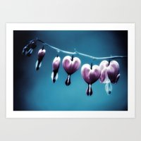 Bleeding Heart Flowers Art Print