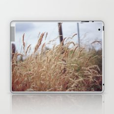 Grass Laptop & iPad Skin