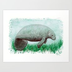 The Manatee ~ Watercolor Art Print