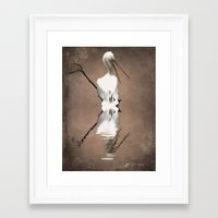 Pelican Perch 2 Framed Art Print