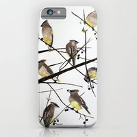 iPhone & iPod Case featuring They groom each other by Condor