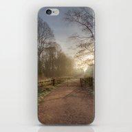 Spruce Ride iPhone & iPod Skin