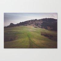 Pieniny Mountains Canvas Print