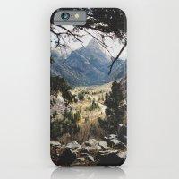 San Juan Forest iPhone 6 Slim Case