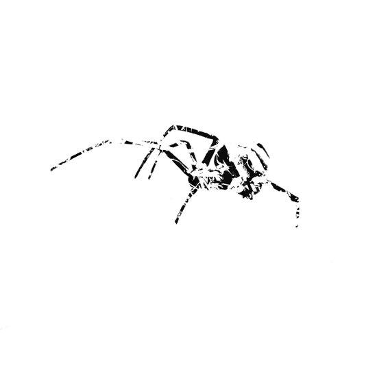 Black Widow Scribble Canvas Print