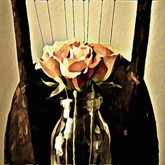 A Rose is still a Rose Canvas Print