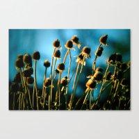 Light Of The Sun Canvas Print