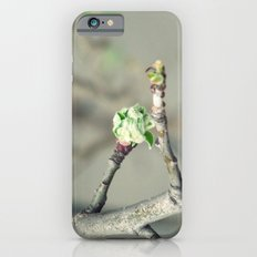 Bud in spring iPhone 6 Slim Case