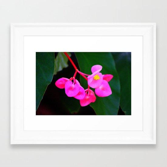 Bold Flower Framed Art Print