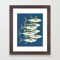 School of Tuna, fish Framed Art Print