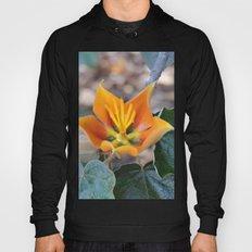 Fremontodendron Blossom Hoody