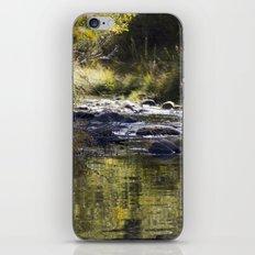 Creekside View iPhone & iPod Skin