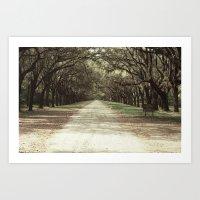 Shady Lane Isle of Hope Art Print