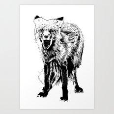 Angry Fox (b&w) Art Print
