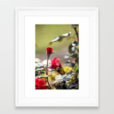 I Don'T Want To Miss A Thing Framed Art Print