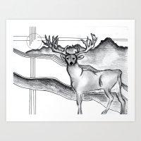 Blue Ridge Deer Art Print