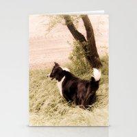 Peppy Stationery Cards