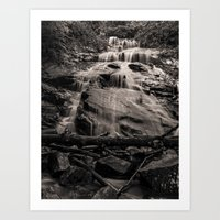 A Little Falls In The Wo… Art Print