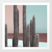 Cactus Colour Block Art Print