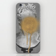 Busted iPhone & iPod Skin