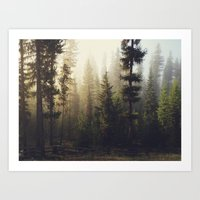 forest Art Prints featuring Sunrise Forest by Kevin Russ