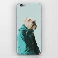 Polaroid N°1 iPhone & iPod Skin