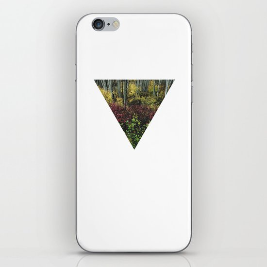 Reverse Pyramid Colors iPhone & iPod Skin
