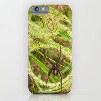 iPhone & iPod Case featuring The Widow by Olive Coleman Photography