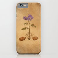 Anatomy of a Potato Plant iPhone 6 Slim Case