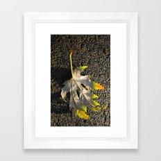 golden maple leaf Framed Art Print