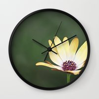 He Loves Me, He Loves Me… Wall Clock