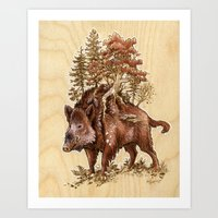Boar of the Woods Art Print