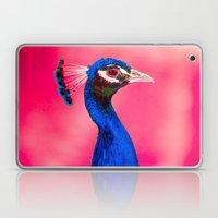Peacock D3 Laptop & iPad Skin