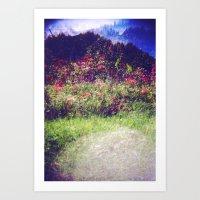 Flowers Plastic Camera D… Art Print
