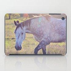 Star Horse iPad Case