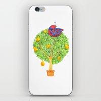 Partridge In A Pear Tree iPhone & iPod Skin